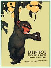 "11x14""Decoration poster.Interior design.Room art.Pasta dental.Mono limpio.7240"