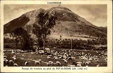 L'Auvergne Frankreich CPA 1943  Pacage de moutons au pied du Puy de Dome Schafe