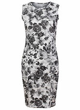 Dorothy Perkins Stretch, Bodycon Floral Dresses for Women