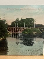 Vintage Postcard, 1908 A Pretty View St.Catherine's Ontario Canada P83
