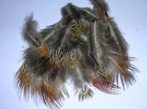 FABULOUSLY FLUFFY PHEASANT FEATHERS  MILLINERY/CRAFT