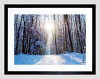 NATURE LANDSCAPE SNOW WINTER FOREST TREE SUN BLACK FRAMED ART PRINT B12X4075