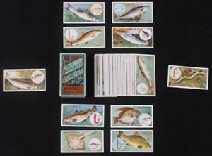Complete Set of (50) 1910 Will's Fish and Bait Tobacco Cards with Original Will'