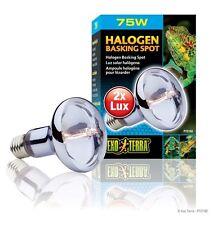 Exo Terra Halogen Basking Spot Light Bulb Reptile Terrarium Replacement Bulb 75W