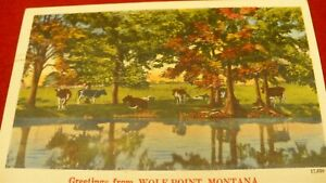 Wolf Point Montana greetings return address Leprosy Mission Vancouver #2065