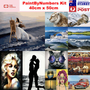 21New Paint By Numbers kit from Australia frameless Landscape Abstract 40cm 50cm