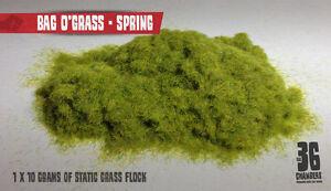 Bag O'Grass - 2mm Spring Static Grass Flock (10g)