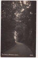 The Drive Wigmore, Capel, Surrey RP Postcard, B686