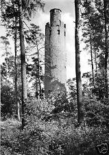 AK, Gneisenaustadt Schildau, Schildbergturm, 1965