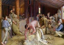 Australian Shearing Sheep Painting Landscape Farm Bush Country Canvas A3