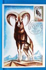 FRANCE CPA   Carte Postale Maximum LE MOUFLON   Yt 1613 C