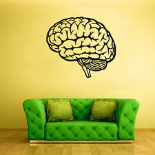 Wall Decal Vinyl Sticker Decals Brain Genius Smart Mind Human (Z1751)