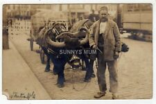 More details for turkey, constantinople, man with oxen cart, rp