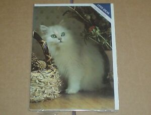 Lovely Long Haired Cat Blank Greeting Card