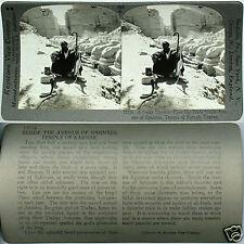 Keystone Stereoview of a SNAKE CHARMER at Karnak, EGYPT From 600/1200 Card Set