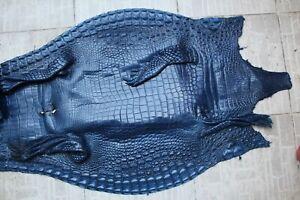 Genuine Crocodile Alligator Skin Leather Hide Exotic Pelt Blue taxidermy Craft
