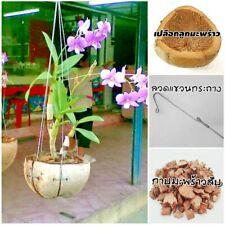 10x Tropical Plant Orchid Planter Coconut Shell Husk Hanger Natural Fiber Garden