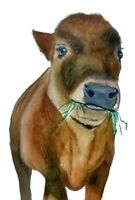 Cow ACEO- Original Painting