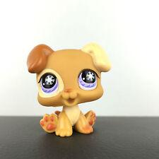 Authentic Littlest Petshop 760 Dog Baby Boxer Puppy / Chien Chiot Bébé LPS