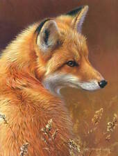 Curious Red Fox by Joni Johnson-Godsy Animal Wildlife Nature Print Poster 13x19