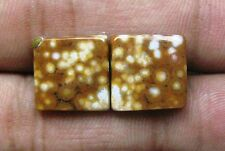 13.80 CTS OCEAN JASPER CABOCHON MATCHED PAIR SQUARE LOOSE GEMSTONE A 7744