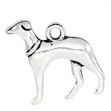 5 x tibetano in argento 3D DOG CIONDOLO CHARMS LEVRIERO