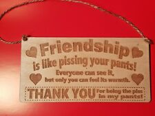 Friendship Is like pissing your pant You Wooden Hanging Plaque Gift Best Friends