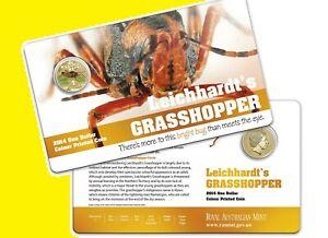 * Australia 1 dollar 2014 Grasshopper * Series 'Bright Bugs' * Al-BrUnc Card RAM