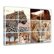 Leinwandbild - Afrika Collage I