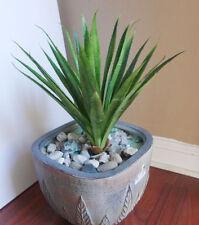"10"" Tall Aloe Leaf Bush Plastic Artificial Grass Succulents Plants"