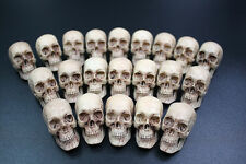 1:6 scale 1 pcs Custom made resin anatomical Skull Accessory for 12in. figures