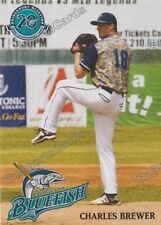 2017 Bridgeport Bluefish Charles Brewer Atlantic League Independent