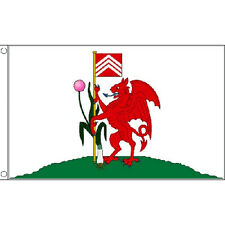Cardiff Flag 5Ft X 3Ft Wales Welsh Dragon City Banner With 2 Eyelets New
