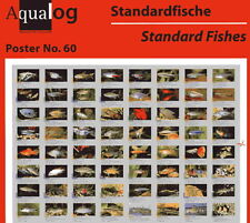 "AQUALOG Poster ""Fishes for Beginners"", LAMINATED"