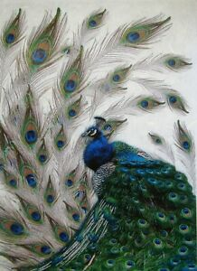 Rice Paper for Decoupage Scrapbook Craft Peacock Bird 23