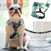 Reflective Mesh Pet Walking Vest Dog Harness and Lead for Small Medium Dogs