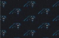 "3'5"" x 6'6"" Carolina Pathers NFL Team Repeat Indoor Area Rug"