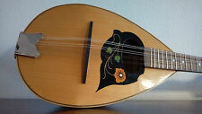 mandolino alfredo privitera vintage mandolin, 曼多林 , แมนโดลิน, napoli