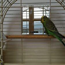 "Birdcage Mirror 5"" Beveled Glass- Square Parakeet Budgie Cockatiel"