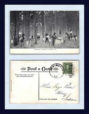 LOUISIANA COVINGTON GATHERING TURPENTINE CIRCA 1907 TO FAYE PATTON, MILROY IN
