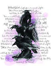 BEATLES LYRIC ARTWORK BLACK BIRD ILLUSTRATION
