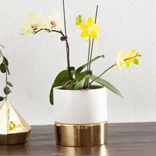 White+Golden Self Watering Flower Pot Ceramic Plants pot Succulent Pot