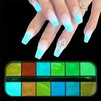 Poudre poussière lumineuse Pigment Fluorescent 1 boîte Neon Phosphor poudre Nail