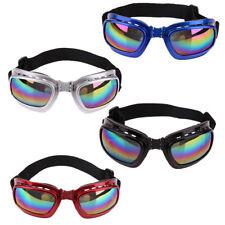 Hundebrille Hundsonnenbrille UV-Schutz - Augenerkrankung, Keratitis