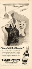 1957 Black & White Scotch Whisky Scotties Shovel Snow Dennis Morgan ART PRINT AD