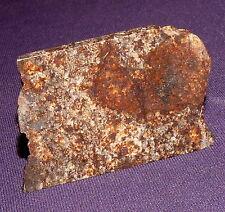 Sehr schöner Stein-Meteorit NWA 869, Heilstein, 47x32x4mm 16,3g