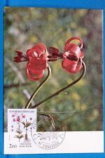 LYS MARTAGON  FLEURS DE MONTAGNE   FRANCE CPA Carte Postale Maximum  Yt  2267 C