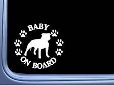 "Baby on Board American Bully Uncropped L474 6"" pitbull Sticker decal"
