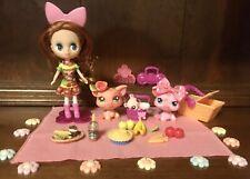Littlest Pet Shop Blythe Doll B11~ #2672 & #2673 Cutest Pigs W/2418~Piggy Picnic