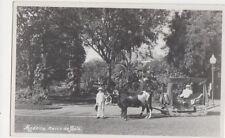 Madeira Carro de Bois 1939 RP Postcard 847a